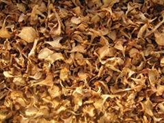 Dried mushroom Cantharellus cibarius