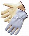 Driver Gloves / Leather Gloves (DCACBK)