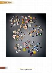 Pins and badge