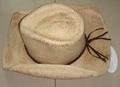 Raffiastraw hat