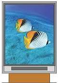 5.7寸 LCD 320240 TFT 真彩液晶顯示屏