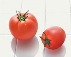 Lycopene 6% Tomato Extract