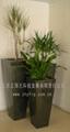 玻璃鋼方形花盆 1