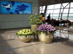 Beijing ZHENGHAIYUAN Techology development CO.LTP
