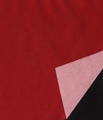 230T twill nylon taffeta milky coated  fabric