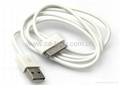 For iPad USB Cable     USB AM TO iPod cable