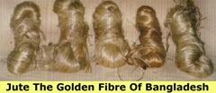 Raw Jute : The Golden Fibre