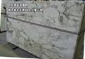 七彩雕刻白 3