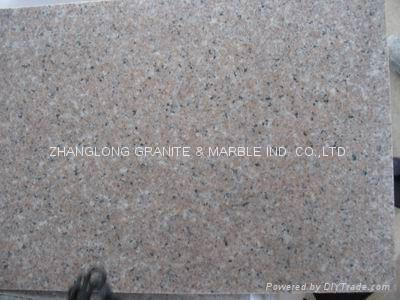 Autumn Red Granite (China Manufacturer) - Countertop