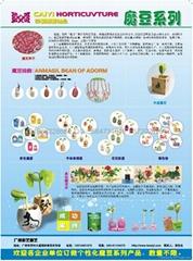 彩毅園藝,DIY園藝禮品,專業訂做廣告禮品之首