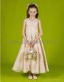 婚纱礼服 3