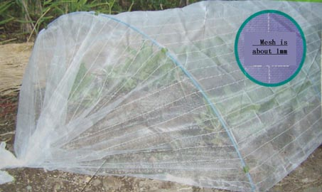 Anti-insect net 1