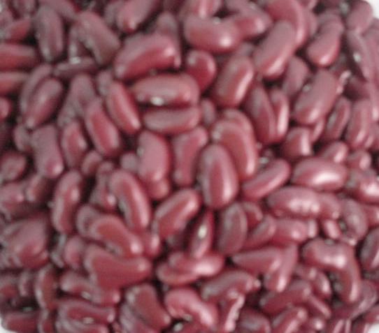 Red Kidney Beans 1