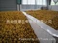 HBXIAN Citrus fruits polyphenols extract