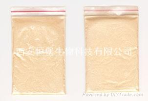HBXIAN Wolfberry betaine extract powder--activity extract products for liver 2