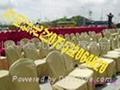 深圳出租椅子會議酒店椅子 1