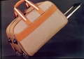 ZF0738 Trolley Case