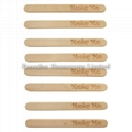 Birch Wood Ice Cream Stick with Customized Logo