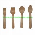 Birchwood Disposable Cutlery/Utensil
