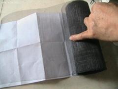 Titanium  mesh: