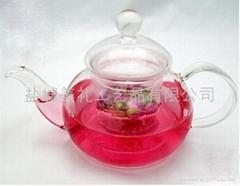GLASS TEA POT