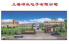 Shanghai Institute of Electronics Company Limited