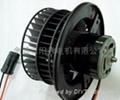 auto blower motor