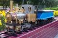 微型蒸汽小火車