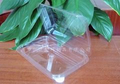 Plastic food container/Fruit clamshell