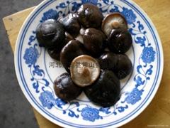 salted shiitake mushroom