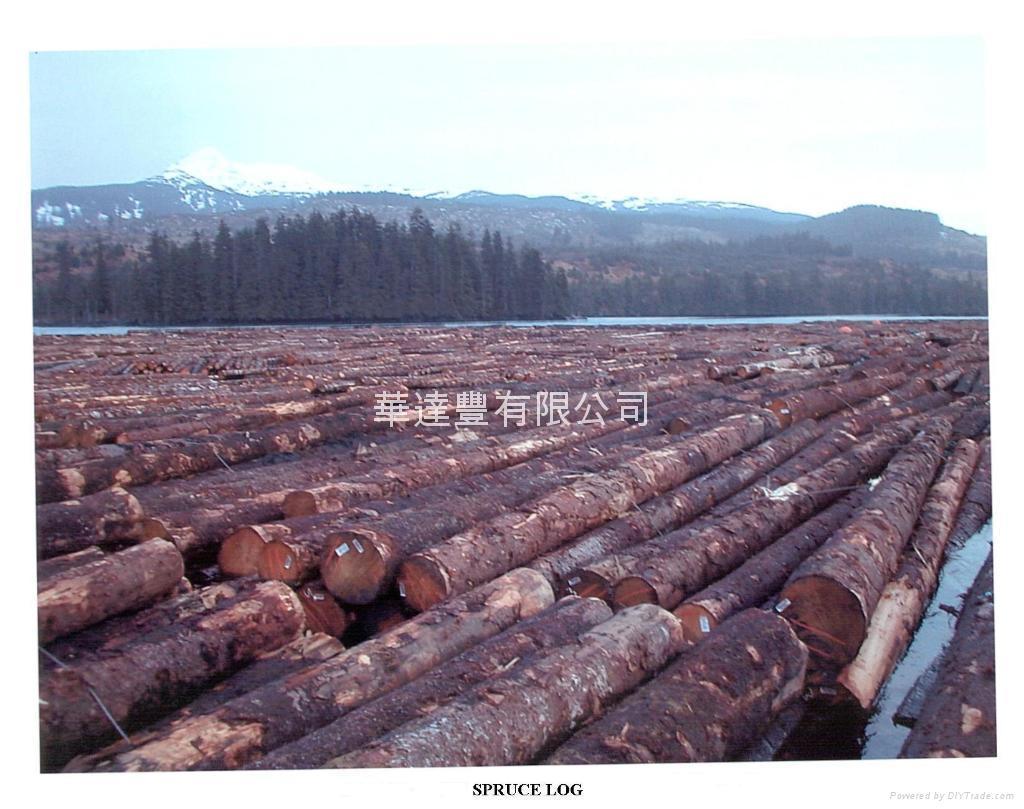 Softwood hardwood log wtf canada trading company