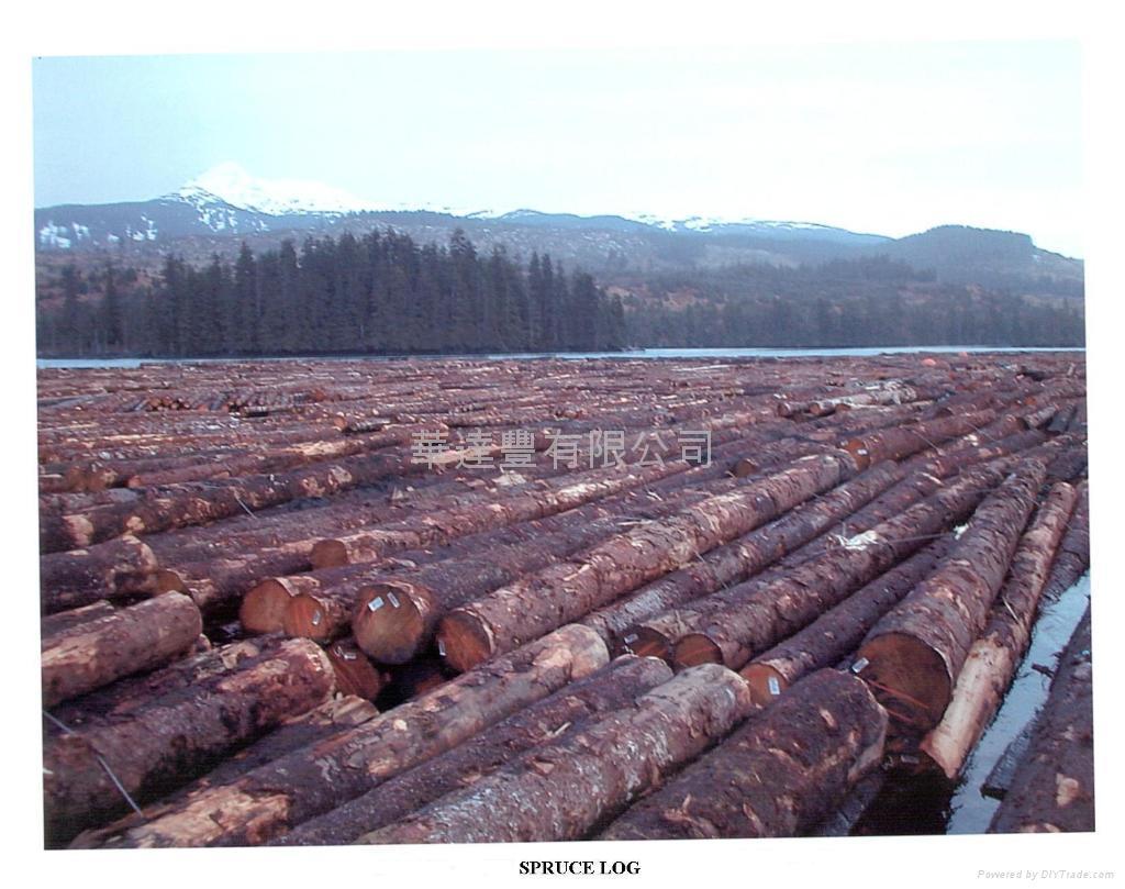 加拿大木材出  易中心 4