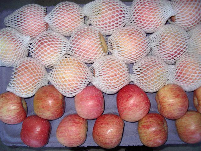 Red Fuji Apples 1