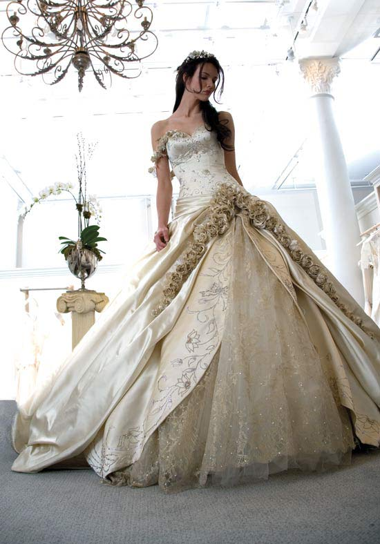 Best Wedding Dresses Only: January 2010