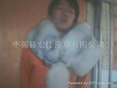 狐狸围脖(蓝)