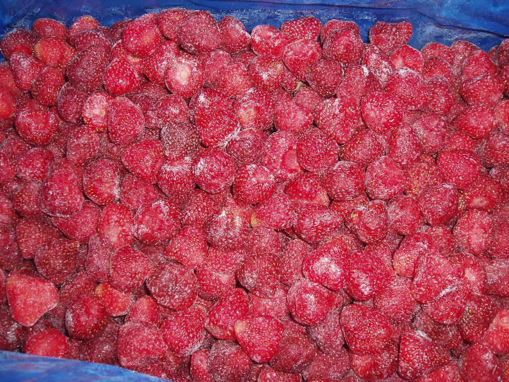 冷冻草莓 - 15-25;25-35 - 美十三,全明星,森格钠