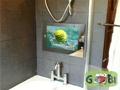19英寸浴室防水液晶电视工厂直销 2