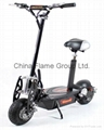 5000W/800W/1000W Mini Electric Scooter