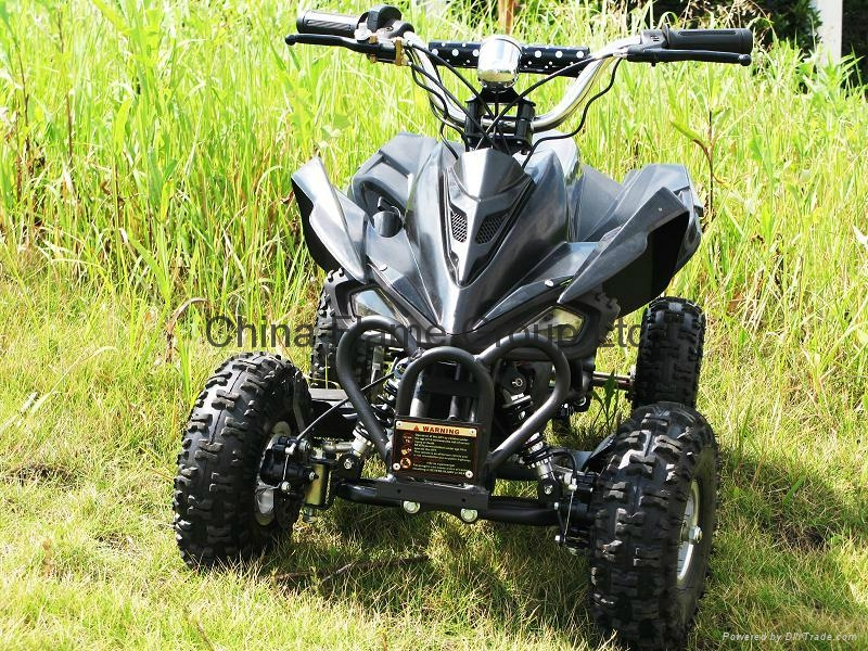 36V/500W,800W,1000W Electric Quad Bikes 3