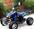 3000W/4000W Electric Sports ATV/Electric