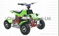 Electric Kids ATV/Electric Kids Quads