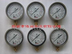 NORTEK液位计,温度计,流量计,压力计,差压开关