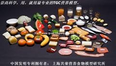 上海共榮醫學營養指導食物模型