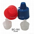 Plastic Screw Cap 1