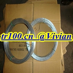 galvanized wire (TIANRUI)