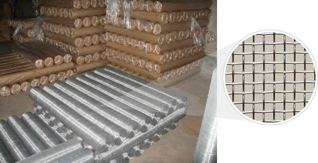 galvanized wire mesh (TIANRUI) 1