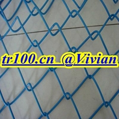 chain link fence (TIANRUI)