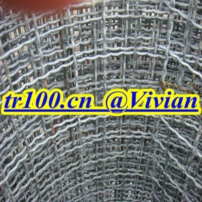 crimped wire mesh (TIANRUI) 3