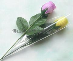 single rose on stem