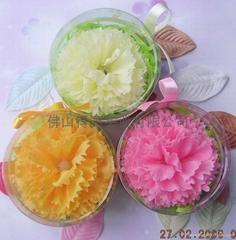 大康乃馨+皂條入圓盒
